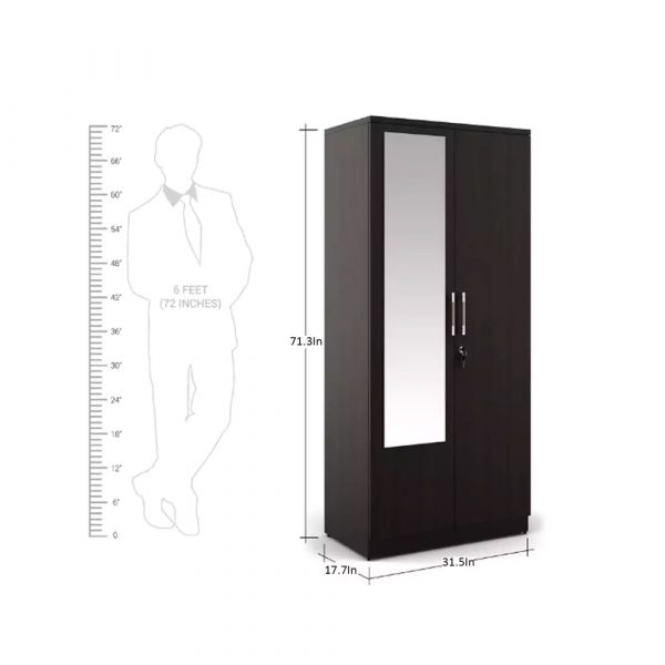 kosmo-carnival-2-door-wardrobe-with-mirror-in-wenge-finish-by-spacewood_by_furniture_magik.jpg
