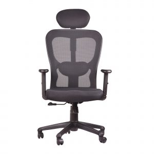Symphony Mesh Fix Headrest Back ErgonomiCChair C011 by Furniture Magik