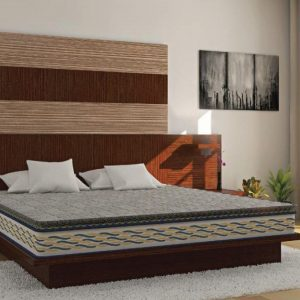 Buy Centuary Mattresses Back Sport 6 inch Single Memory Foam Mattress Online