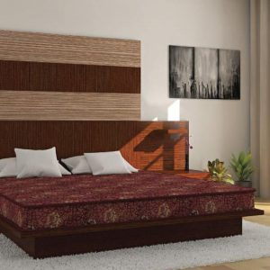 Buy Centuary Mattresses Joy 4 inch Queen Coir Mattress Online