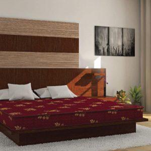 Buy Centuary Mattresses Jyothi 6 inch Queen Coir Mattress Online