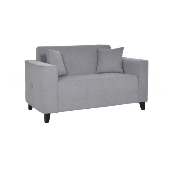 Buy Faenza Two Seater Sofa in Ash Grey Colour Online