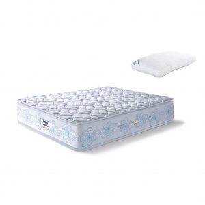 Buy Peps Restonic Geneva 8 inch Blue Pillow Top Single Spring Mattress Online