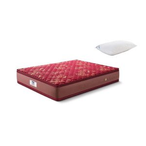 Buy Peps Springkoil Pillow top Maroon 10 inch Single Spring Mattress Online