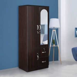 Havel Engineered Wood 2 Door Wardrobe