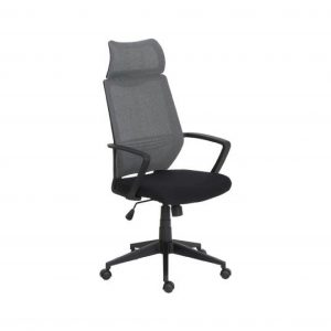 Columbia Synthetic Office Arm Chair