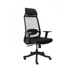 Hastin High Back Ergonomic Chair